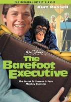 Barefoot Executive