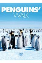 Penguins' Walk