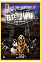 Dogtown - New Beginnings