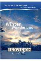 Esovision Relaxation: Winter Wonderland
