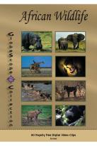 GlobeScope Collection: African Wildlife