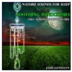 Nature Sounds For Sleep: Soothing Windchimes