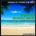 Sounds Of Nature For Sleep: Tranquil Tropical Beach