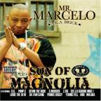 Son Of Magnolia