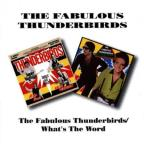 Fabulous Thunderbirds/What's the Word?
