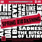Karaoke: Spring Awakening, Songs from the Broadway Musical