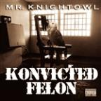 Konvicted Felon