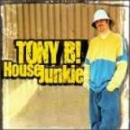 Tony b house project