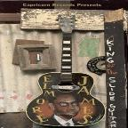 Elmore James: King Of The Slide Guitar, The Fire/Fury/Enjoy Recordings
