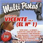 Vol. 9 - Exitos Multi Pistas