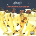 Labcabincalifornia