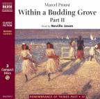 Remembrance Of Things Past, 4 - Within A Budding Grove