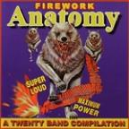 Firework Anatomy: Twenty Band Compilation