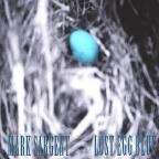 Lost Egg Blue
