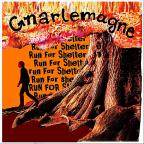 Run For Shelter