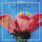 Vivaldi: Six Violin Concertos for Anna Maria