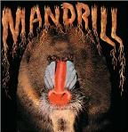Mandrill