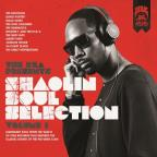 RZA Presents Shaolin Soul Selection, Vol. 1