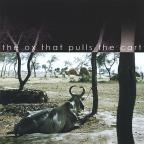 Ox That Pulls The Cart
