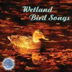 Nature's Rhythms: Wetland Bird Songs