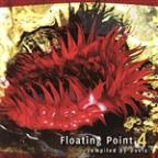 Floating Point Vol 4