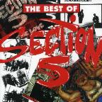 Best of Section 5