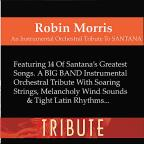 Instrumental Orchestral Tribute To Santana