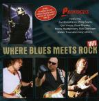 Vol. 8 - Where Blues Meets Rock