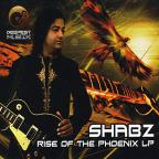 Rise Of The Phoenix LP