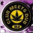 Club Meets Dub, Vol. 2.0