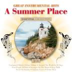 Summer Place: Great Instrumental Hits