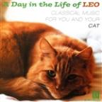 Day in the Life of Leo: Classical Music for You and Your Cat