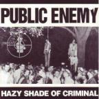 Hazy Shade Of Criminal