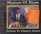 Masters Of Blues: A Tribute To Elmore James