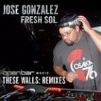 These Walls (Remixes)