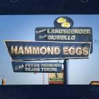 Hammond Eggs