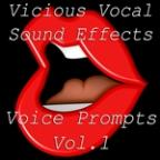 Vicious Vocal Sound Effects 10 - Voice Prompts Vol. 1