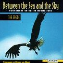 Between The Sea And The Sky Reflections On Native Meditations: The Eagle