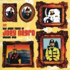 Many Faces Of Joey Negro 2