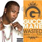 Wasted [Feat. Plies] [Remix]