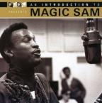 An Introduction to Magic Sam