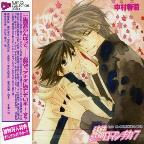 Junjo Romantica Vol 7