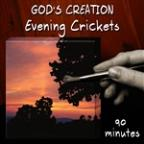 Evening Crickets (90 Minutes)