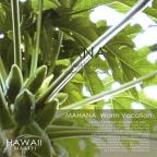 Mahana-Warm Vacation