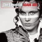 Essential Adam Ant