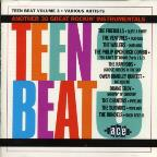Teen Beat, Vol. 3