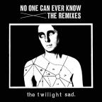No One Can Ever Know: The Remixes