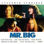 Mr Big - Extended Versions