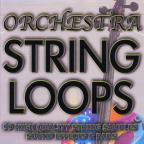String Loops & Samples
