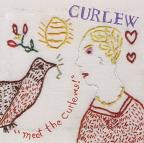 Meet the Curlews!